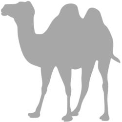 Dekbed van kamelenhaar